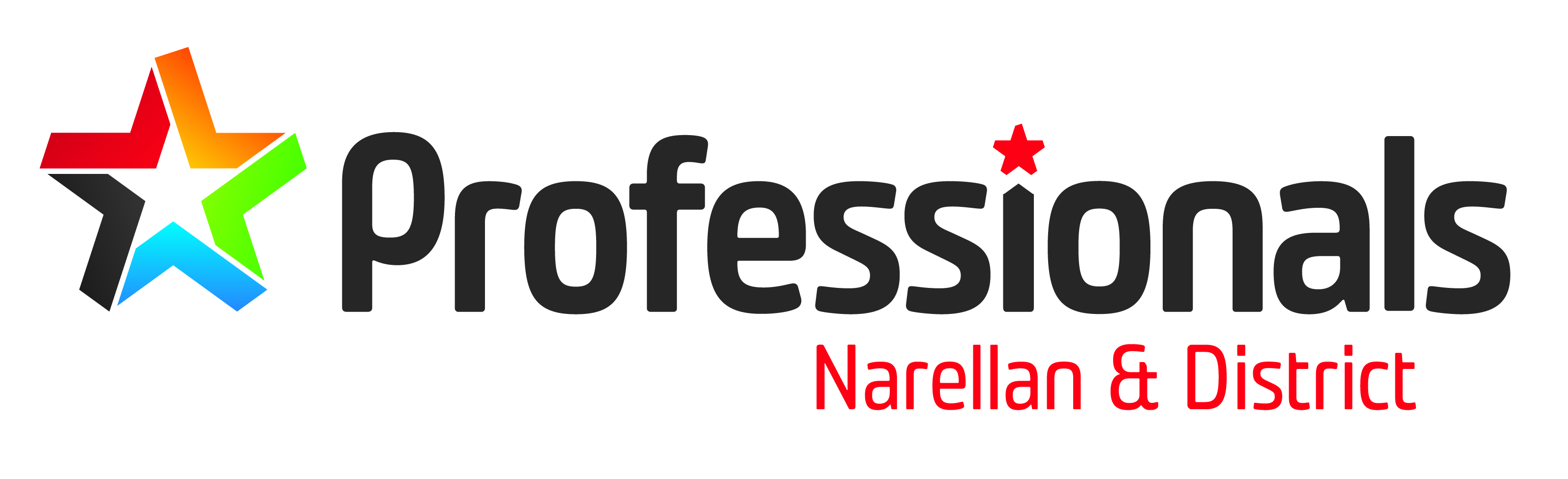 Professionals Narellan & District, Narellan, 2567