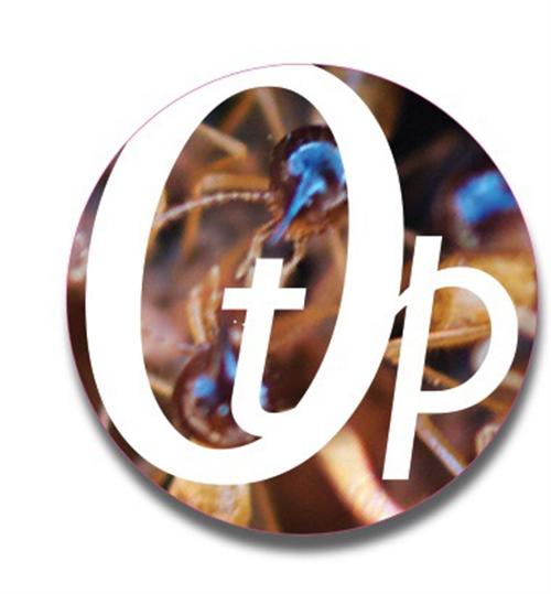 OTP-NT , Darwin, 0800